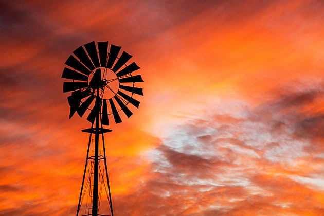 Vibrant Sunset with Windmill in West Texas Cattle Country