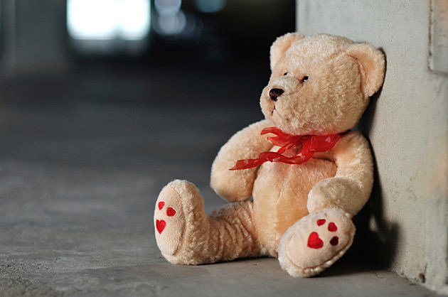 Toys For Tots Bear : Toys for tots kicking off
