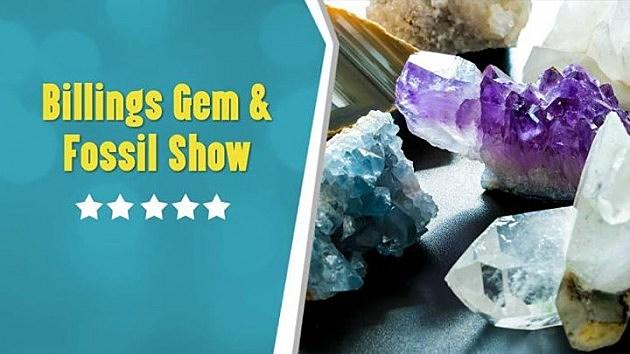 billings-gem-fossil-show-4985